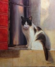 Gato, óleo sobre lienzo, 60x50